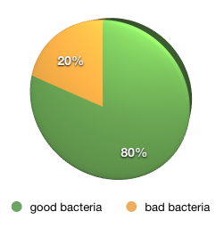 good and bad gut bacteria ratio